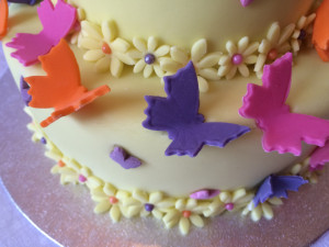Birthday Butterflies Detail
